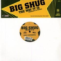 "Big Shug - The Way It Is 12"""