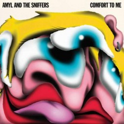 Amyl and The Sniffers -...