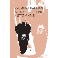 Bauman, Zygmunt & Bordoni,...